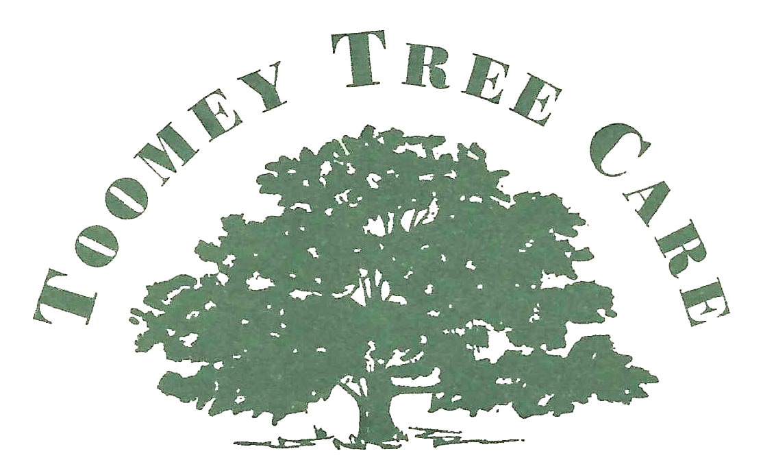 Canaan, Lakeville and Sheffield Tree Service